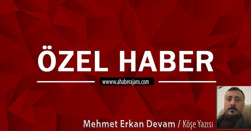 Mehmet Erkan Devam ; Peki ne yazıyor bu kitapta?